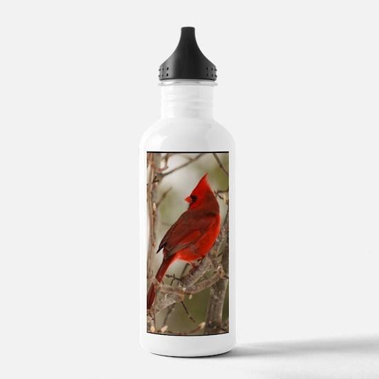 cardinal1pster Water Bottle
