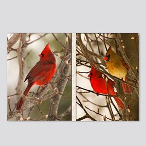 cardinalstwopics Postcards (Package of 8)