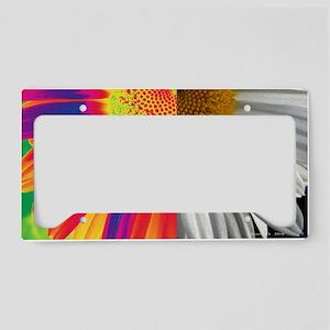 IMG_9288ca2lsighgrd License Plate Holder