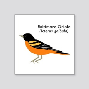 "baltimore oriole Square Sticker 3"" x 3"""