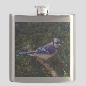 bluejayPil Flask