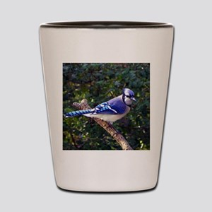 bluejayPil Shot Glass