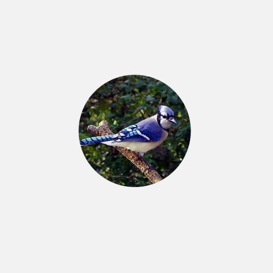 bluejayPil Mini Button