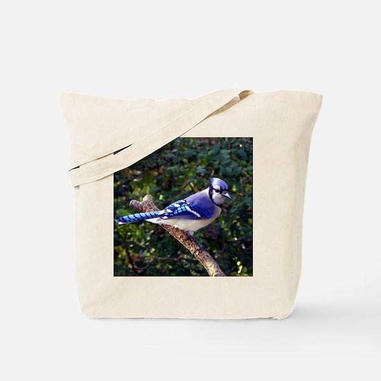 bluejayPil Tote Bag