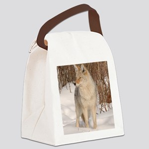 ms  Coyote 048 Canvas Lunch Bag