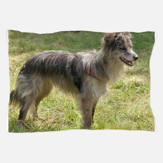 pyrenean shepherd full third Pillow Case
