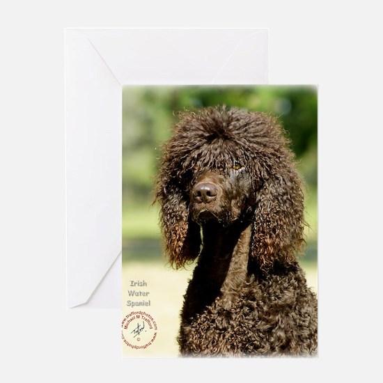 Irish Water Spaniel 9R032D-363 Greeting Card