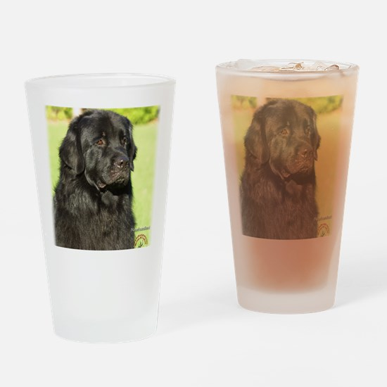 Newfoundland 9M099D-018 Drinking Glass