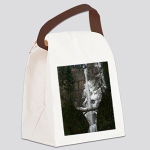 IMG_3554 18x24 coT Canvas Lunch Bag