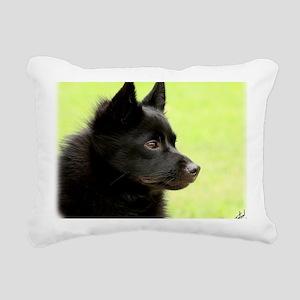 Schipperke 9Y506D-026 Rectangular Canvas Pillow