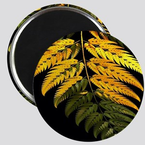 special fern Magnets