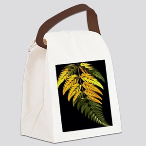 special fern Canvas Lunch Bag