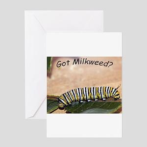 Got Milkweed Greeting Cards