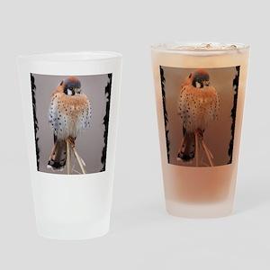 xB Kestral Drinking Glass