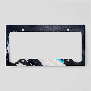 Dragon Lady License Plate Holder