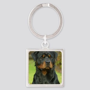Rottweiler 9W044D-073 Square Keychain