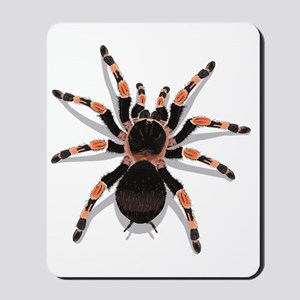 tarantula_CP Mousepad