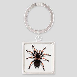 tarantula_CP Square Keychain