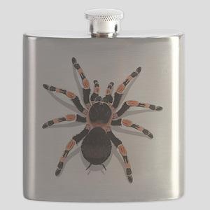 tarantula_CP Flask