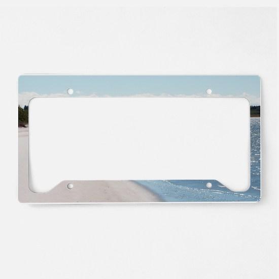 ReagansMom Dunes Park 5 39 wi License Plate Holder