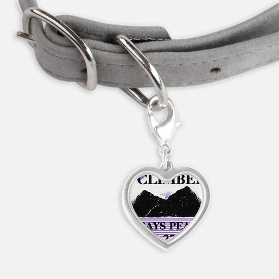 Iclimbedgrey Small Heart Pet Tag