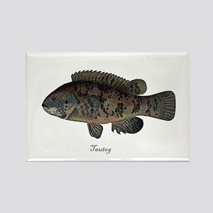 Tautog Rectangle Magnet
