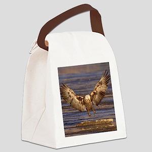 x10B  landing gear Canvas Lunch Bag