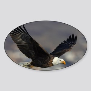 x14B  highfly Sticker (Oval)