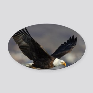 x14W  highfly Oval Car Magnet