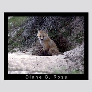 Red Fox Kit Small Poster
