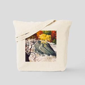 Leny Falls Tote Bag
