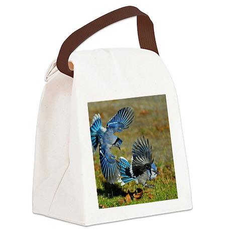 9x12_print 4 Canvas Lunch Bag