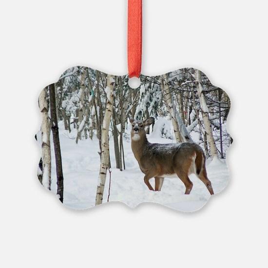 14x10_print Ornament