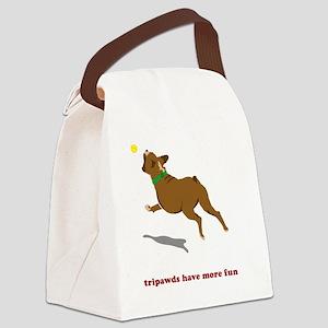 blanket-tripawd-furn-boxer Canvas Lunch Bag