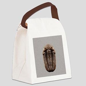trilobiteSQ3OVE Canvas Lunch Bag