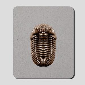 trilobiteSQ3OVE Mousepad