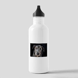 Rogue! Water Bottle
