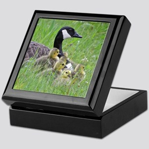 Goslings with mom Keepsake Box