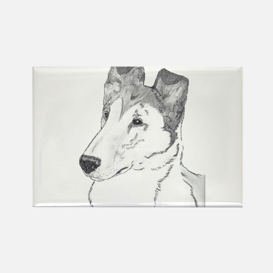 Smooth Collie sable Magnets