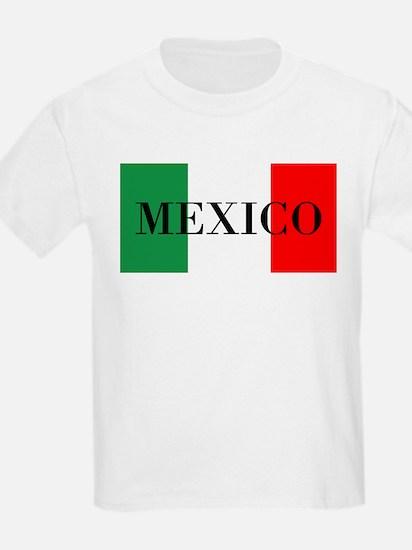 Mexico Flag Colors T-Shirt