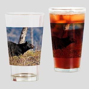 Black bear (5) Drinking Glass