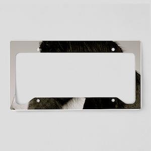 Regal License Plate Holder
