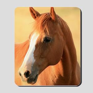 horse Mousepad