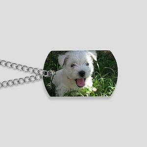 IMG_0991 Dog Tags