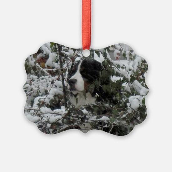IMG_0189-1 Ornament