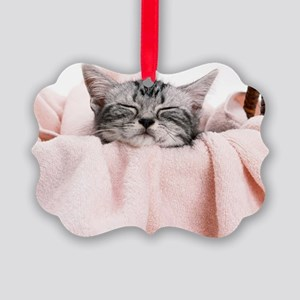 kitty basket mousepad Picture Ornament