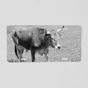 Longhorn B  W II Aluminum License Plate