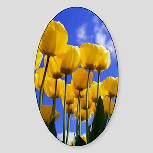 Tulips_iPhone Sticker (Oval)