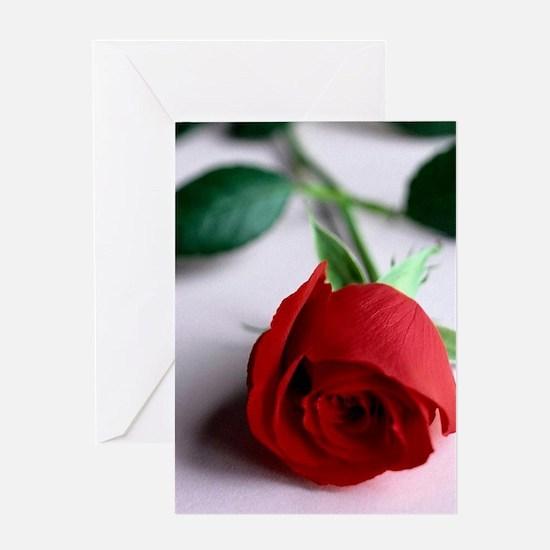 Red_Rose Greeting Card