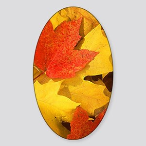 Autumn_leaves_iPhone Sticker (Oval)